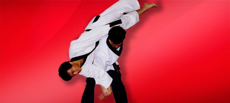 Hapkido flip A History of Hapkido